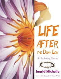Life After the Down Low Bookcover